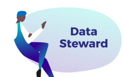 Data Steward: what is the role of this DataBakers?