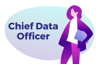 Chief Data Officer: what is the role of this DataBakers?