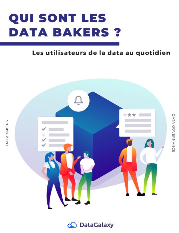 Ressource-Livre-Blanc-DataBakers